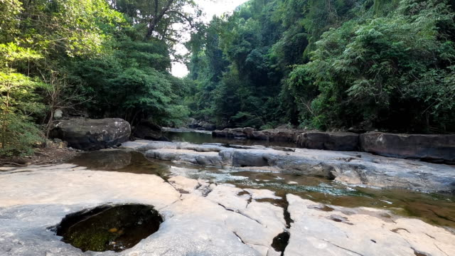 river and waterfall in forest - oirase river stock videos & royalty-free footage