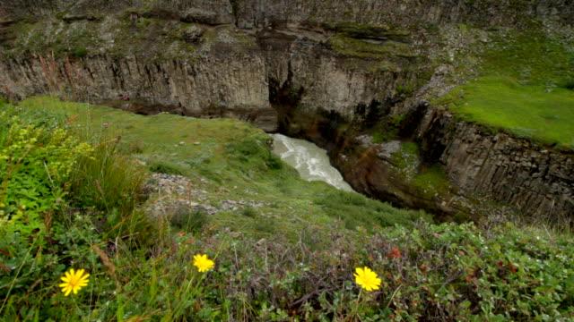vidéos et rushes de rivière et jaune fleurs - tourisme vert