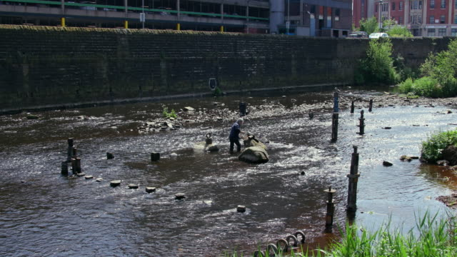 river artist dan; river don, sheffield - sheffield stock videos & royalty-free footage