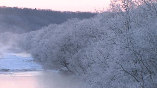 river at dawn, hokkaido, japan - hokkaido stock videos & royalty-free footage