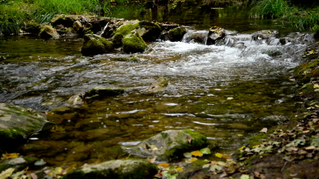 river. autumn - earth goddess stock videos & royalty-free footage