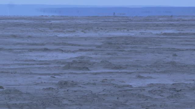 river bank heat haze,  alaska, 2009 - mud flat stock videos and b-roll footage