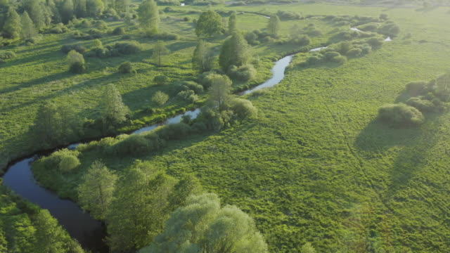 river bed - top view from drone - ravine stock videos & royalty-free footage