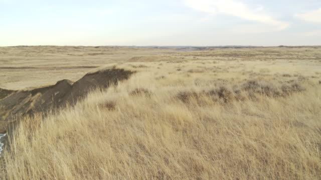 A river cuts through a prairie.