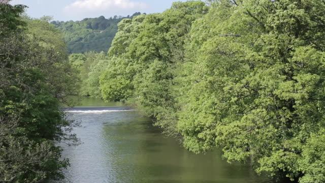 river derwent near cromford, derbyshire dales, derbyshire, england, uk, europe - derbyshire stock-videos und b-roll-filmmaterial