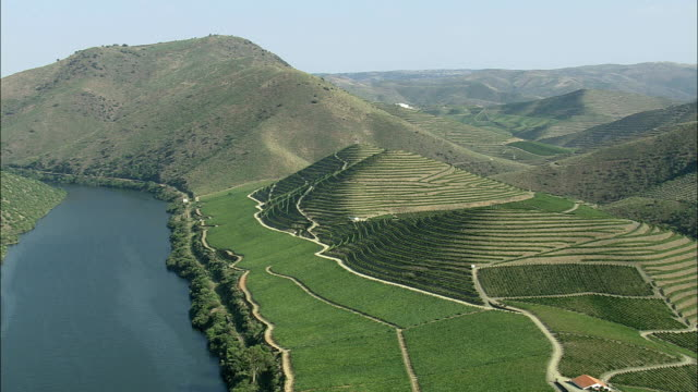 aerial ws river douro with adjacent vineyards / guarda, portugal - portugal stock videos & royalty-free footage