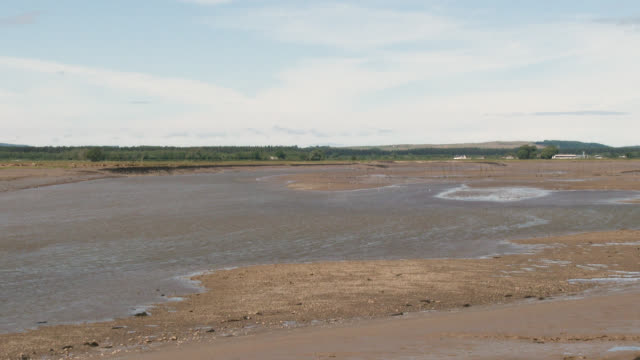 river estuary at low tide - johnfscott stock videos & royalty-free footage