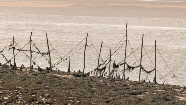 river estuary at low tide with old poles for fishing nets - johnfscott stock videos & royalty-free footage