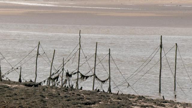 vídeos de stock, filmes e b-roll de estuário do rio na maré baixa com velhos postes para redes de pesca - vazante