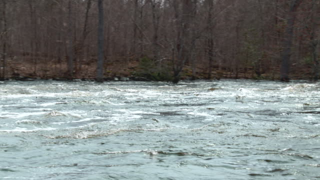 River flood with fast water in spring
