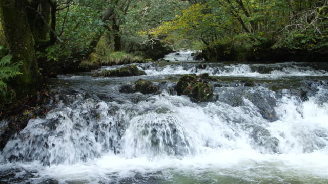 fluss im lake district, england. torver beck. - wildwasser fluss stock-videos und b-roll-filmmaterial