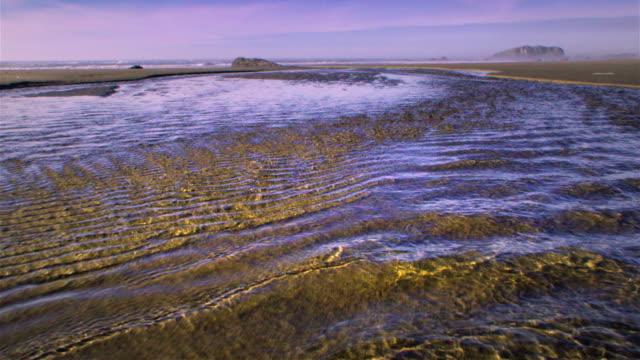 ws pov river flowing into ocean / bandon, oregon, usa - costa dell'oregon video stock e b–roll