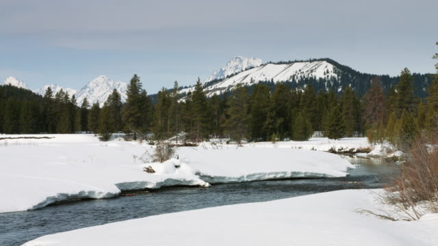 river flowing through grand teton national park in early spring - grand teton stock videos & royalty-free footage