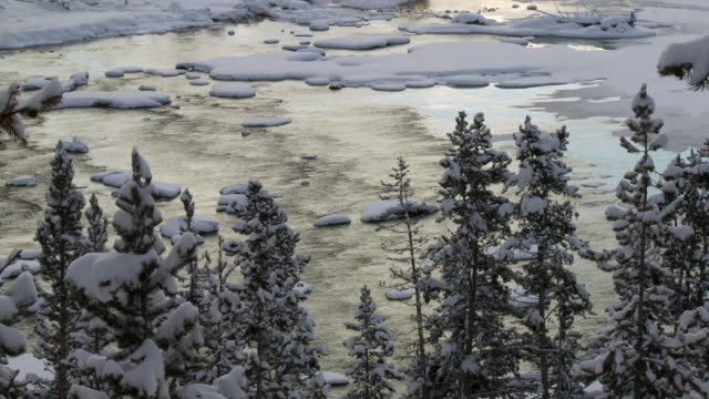 ws tu river flowing through snowy landscape / yellowstone national park, wyoming, united states - yellowstone river stock videos and b-roll footage