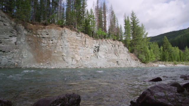 river flows through forested valley, glacier national park, usa - glacier nationalpark stock-videos und b-roll-filmmaterial