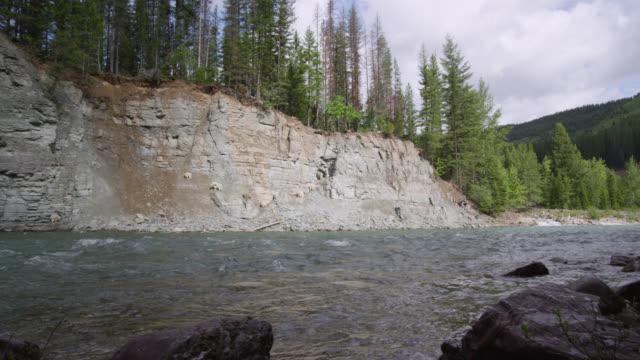 vídeos de stock, filmes e b-roll de river flows through forested valley, glacier national park, usa - glacier national park us