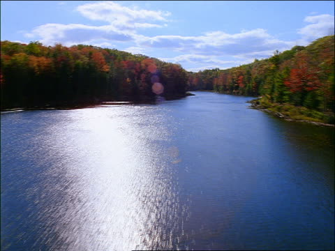 AERIAL river + forest in Autumn / New England