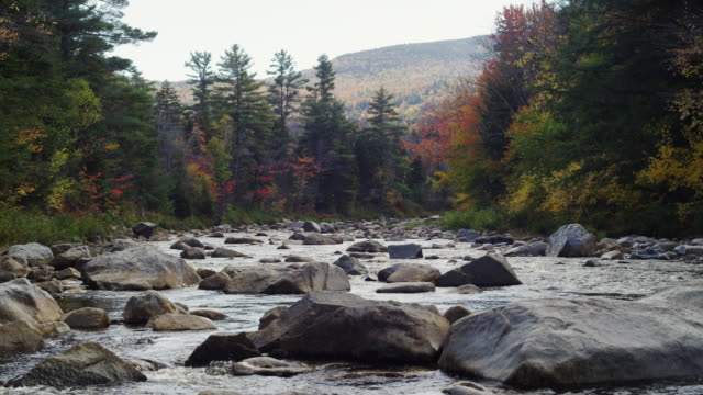 stockvideo's en b-roll-footage met river in acadia national park wide shot with blue sky and mountains. - kei