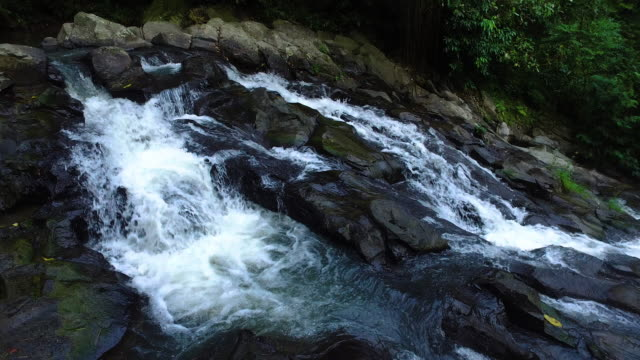 River in bali jungle