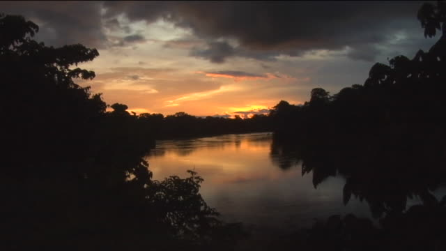 river in brazil at sunset, tilt down - river amazon stock videos & royalty-free footage