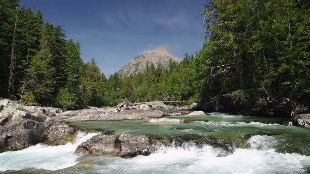 vídeos de stock, filmes e b-roll de river in glacier national park slow motion 2. - glacier national park us