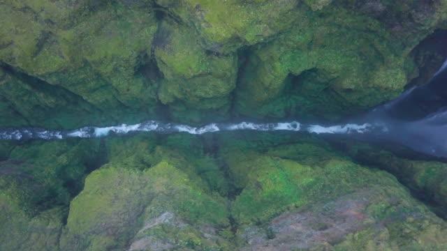 vidéos et rushes de rivière dans le canyon de l'islandais - mousse végétale