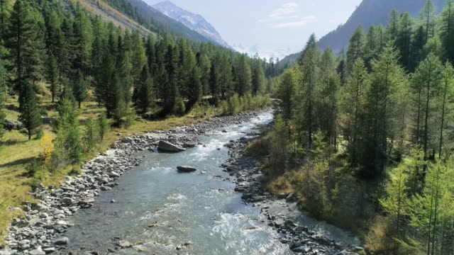 river in mountain scenery - alpi video stock e b–roll