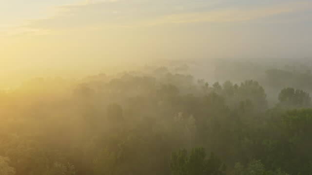 aerial river in the morning fog - prekmurje stock videos & royalty-free footage