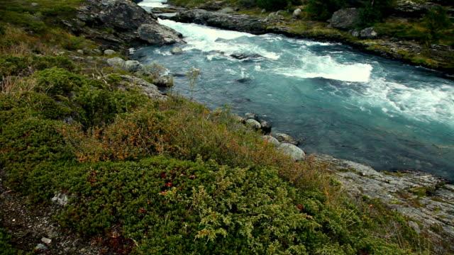 river in die berge bei dämmerung. - moos stock-videos und b-roll-filmmaterial