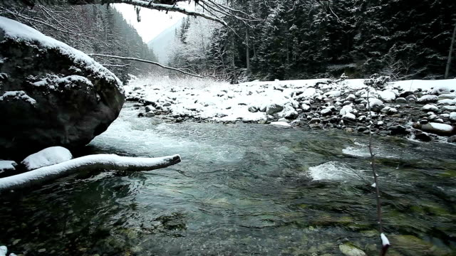River in the mountains of Caucasus