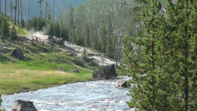 river in yellowstone national park - western usa stock videos & royalty-free footage
