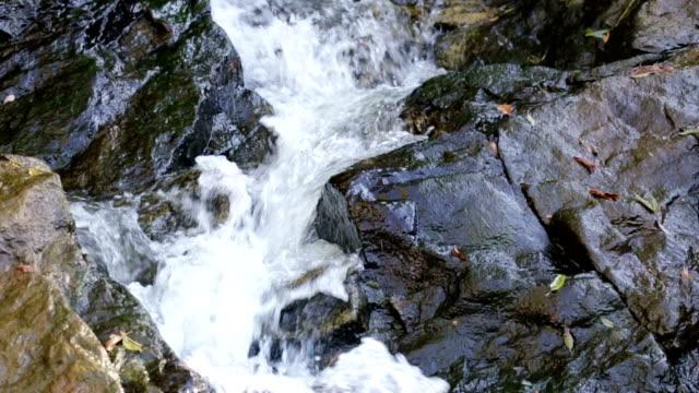 stockvideo's en b-roll-footage met rivier stroomt beneden door rotsen. - rabiës