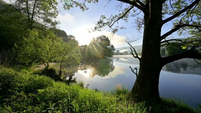 river main at sunrise in spring, bürgstadt, miltenberg, churfranken, spessart, franconia, bavaria, germany - woodland stock videos & royalty-free footage