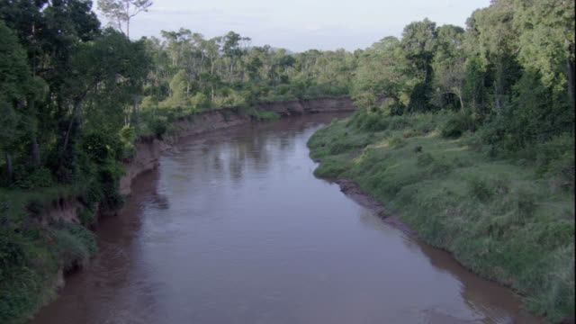 A river meanders past lush forests in Masai Mara, Kenya. Available in HD.
