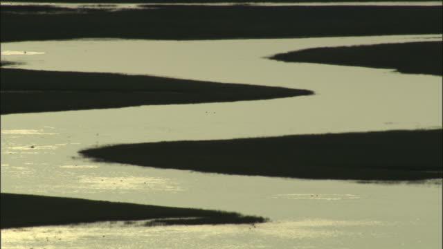 River meanders through grassland at dusk, Bayanbulak grasslands.