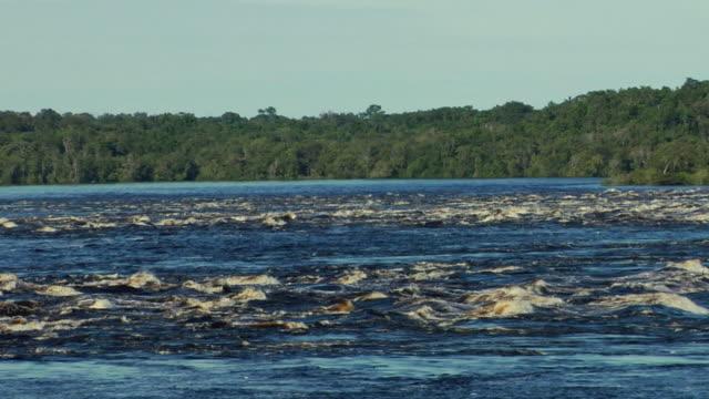 stockvideo's en b-roll-footage met ws zo river negro rapids / sao gabriel da cachoeira, amazonas, brazil - color negro