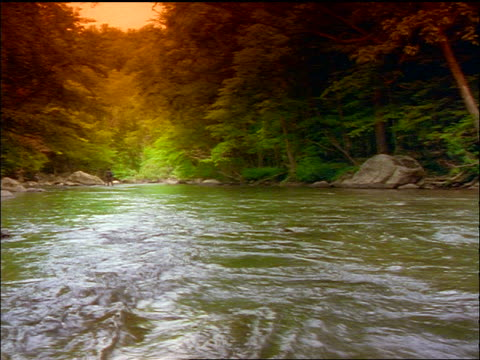 river + pine forest / person fishing in far background / multicolored filter - pinacee video stock e b–roll