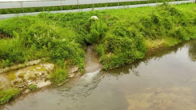 河川汚染 - 不完全な美しさ点の映像素材/bロール
