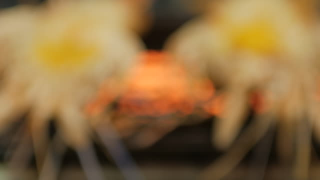 River Prawn grilled on fire , panning movement , 4k(UHD)