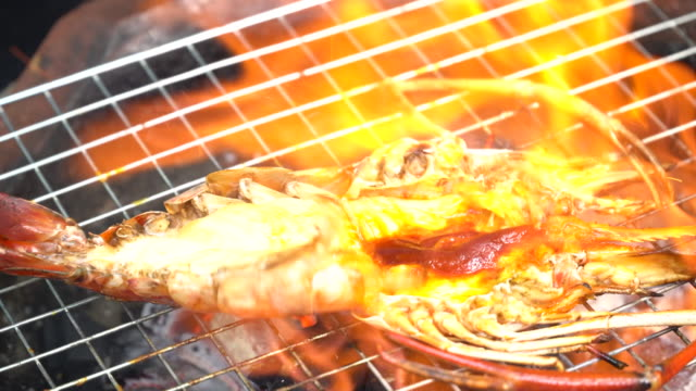 river prawn grilled on fire - prawn animal stock videos and b-roll footage