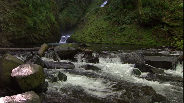 river rocks create rapids in the columbia river gorge. - columbia river gorge stock videos & royalty-free footage