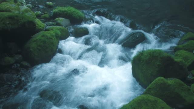 ha river running through mossy rocks - 小川点の映像素材/bロール