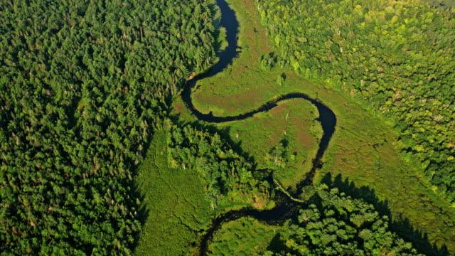 stockvideo's en b-roll-footage met antenne rivier die door het zonnige bos in ontario, canada loopt - moeras