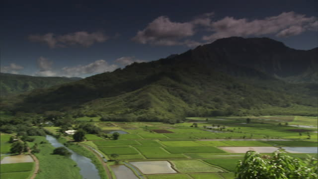 a river runs through farmland on hawaii's kauai island. - カウアイ点の映像素材/bロール