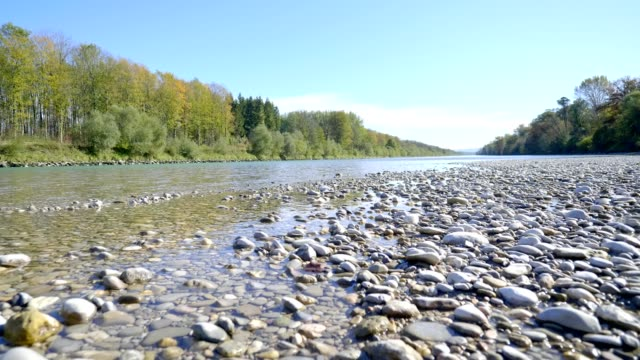 river salzach in autumn. - riverbank stock videos & royalty-free footage