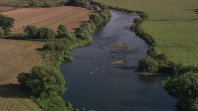 river severn at wroxeter - river severn stock videos & royalty-free footage