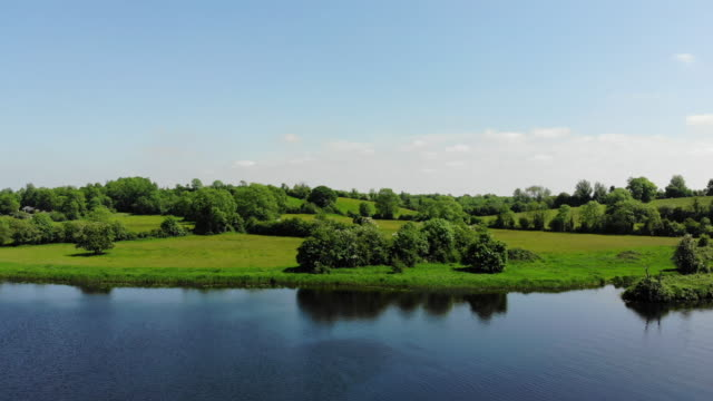 river shannon detail in spring - panning stock videos & royalty-free footage
