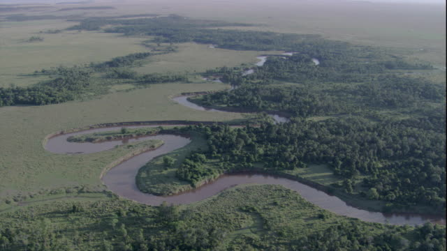 A river snakes past lush forests and grasslands in Masai Mara, Kenya. Available in HD.