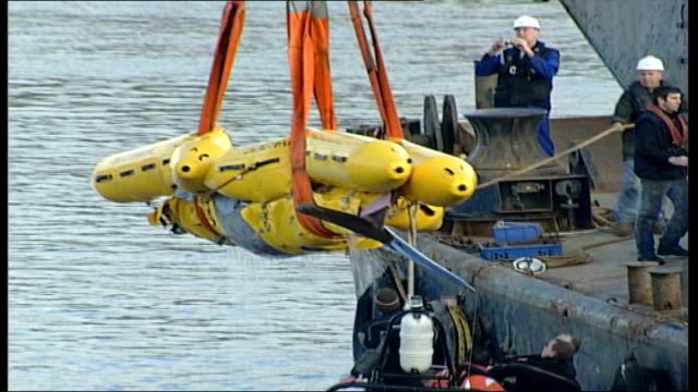 river thames whale dies file / tx london river thames northern bottlenosed whale which got lost in river thames being winched aboard barge for... - aquatic organism stock videos & royalty-free footage