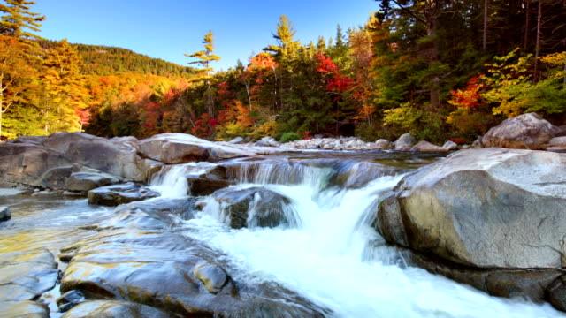 river through fall foliage, swift river lower falls, nh, usa - new england usa stock videos & royalty-free footage
